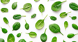 ¡NUEVO! Organic Greens Booster